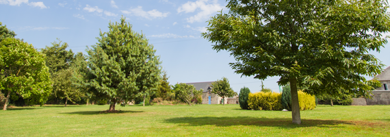 Discover our outside areas and gardens at 'La Ferme aux Chats' Normandy